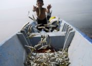 el-salvador-fishing